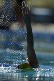 Rückenschwimmen 020 Lizenzfreie Stockfotos