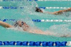 Rückenschwimmenschwimmer Stockfotos
