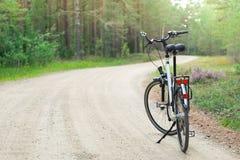 Rückseite des Fahrrades im Wald, DOF Stockfotos