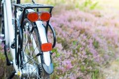 Rückseite des Fahrrades im Wald, DOF Lizenzfreie Stockfotos