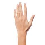 Rückseite einer Frauenhand Stockfotografie