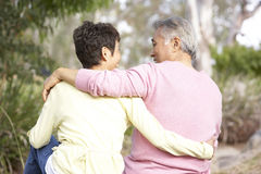 Rückseitige Ansicht der älteren Paare im Park Lizenzfreie Stockfotografie