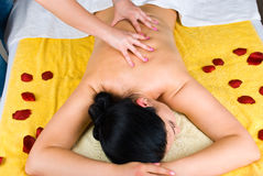Rückseitige Massagefrau des Fachmannes Stockbilder