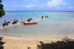 Rückseitiges Reiten des Pferds im Meer, Jamaika Stockbild