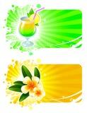 Rücksortierungfelder mit Cocktail u. tropischen Blumen Stockfoto