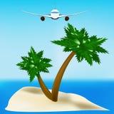 Rücksortierungrest auf tropischen Inseln Stockbild