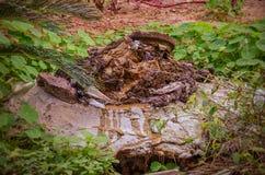 Rückstände kommen aus eine Abwasserkanalluke heraus Stockfotografie