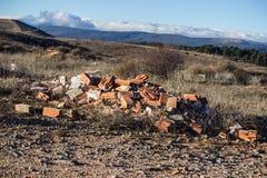 Rückstand geworfen in den Busch, der den Planeten verschmutzt lizenzfreies stockbild