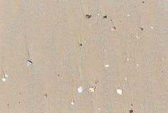 Rückstandoberteile auf dem Strand Stockbild