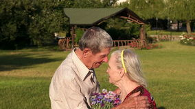 Rührende ältere Paare, die im Park umarmen stock video footage