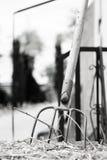 Rührstange fest im Stroh Stockbild