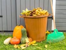 Rührstangen mit Herbstlaub Stockfoto