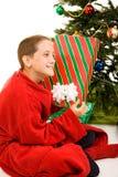 Rütteln des Weihnachtsgeschenks Lizenzfreie Stockfotos