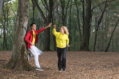 Rütteln im Wald Lizenzfreies Stockbild