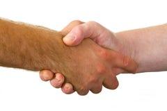 Rütteln Sie Hände Lizenzfreies Stockbild