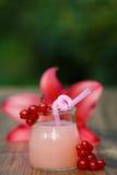 Rütteln Sie mit Cocktail der rosa Pampelmuse auf grünem Hintergrund bokeh Lizenzfreie Stockbilder