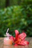 Rütteln Sie mit Cocktail der rosa Pampelmuse auf grünem Hintergrund bokeh Stockfotografie