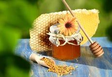 Rütteln Sie voll vom köstlichen Honig-, Bienenwaben- und Bienenblütenstaub Lizenzfreie Stockfotografie