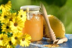 Rütteln Sie voll vom köstlichen Honig-, Bienenwaben- und Bienenblütenstaub Lizenzfreie Stockfotos