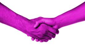 Rütteln von Händen von zwei Leuten, von Mann und von Frau lizenzfreies stockbild