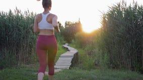 Rüttelnd in der Natur, läuft aktives Sportmädchen mit schönem Körper in der Eignungskleidung auf Holzbrücke draußen unter Schilfe stock footage