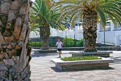 Rüttler, der auf der Promenade läuft lizenzfreies stockfoto