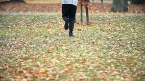 Rüttler, der in den Herbstpark läuft stock video footage