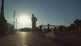 Rüttler, der draußen bei Sonnenaufgang ausbildet stock video