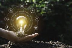 ręce gospodarstwa światła żarówki oszczędność energii światła żarówki Innowacja i kreatywnie pojęcie fotografia stock