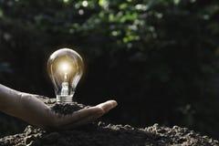 ręce gospodarstwa światła żarówki oszczędność energii światła żarówki Innowacja i kreatywnie pojęcie fotografia royalty free