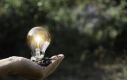 ręce gospodarstwa światła żarówki oszczędność energii światła żarówki Innowacja i kreatywnie pojęcie obrazy royalty free