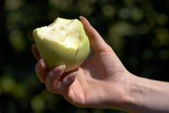ręce jabłczana kobieta Fotografia Royalty Free