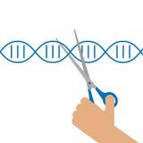 Ręczna inżynieria genetyczna ilustracja wektor