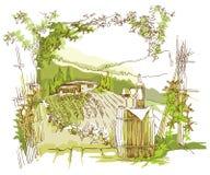 Ręcznie robiony nakreślenia winogrona pola i winnicy ilustracji
