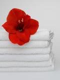 ręczniki biały Fotografia Royalty Free