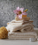 Ręcznikowy styl życia Zdjęcie Royalty Free