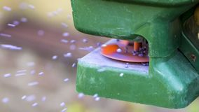 Ręczny użyźnianie gazon w podwórzu w wiosna czasie z bliska zdjęcia royalty free