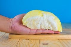 ręka chwyta durian braja obrazy royalty free