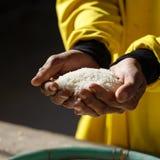 Ręka chwyta ryż Zdjęcia Stock