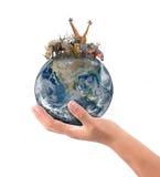 Ręka chwyta zwierzę na ziemi Zdjęcie Stock