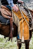 Ręka Cowhand obraz royalty free