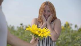 Ręka daje kwiatu imbirowa dziewczyny pozycja na słonecznikowym polu unrecognizable mężczyzna Romantyczny zwi?zek zdjęcie wideo