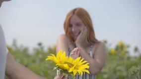 Ręka daje kwiatu imbirowa dziewczyny pozycja na słonecznikowym polu unrecognizable mężczyzna Romantyczny zwi?zek zbiory