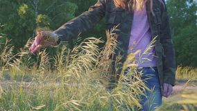 Ręka dziewczyna w kamuflaż kurtce w wiosce dotyka rośliny zbiory wideo