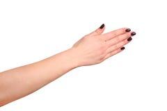 ręka gestu manicure kobiety fotografia royalty free