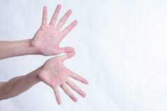 Ręka gesty tak jak latający ptaki na białym tle Obrazy Stock