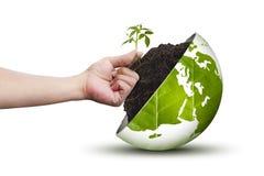 Ręka i eco świat na trawy nieba tle Zdjęcia Royalty Free
