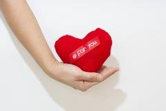 Ręka i serce odizolowywamy na białym tle Zdjęcia Royalty Free