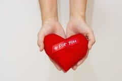 Ręka i serce odizolowywamy na białym tle Zdjęcie Royalty Free