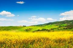 ręka ilustracyjny Włoch krajobraz malowaniu Toskanii Obraz Stock